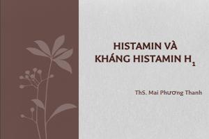 thuốc kháng histamin H1