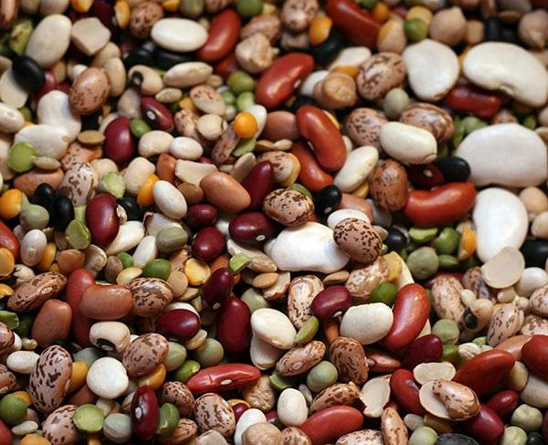 Dinh dưỡng từ đậu đỗ