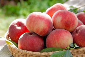 Chọn mua các loại trái cây biết rõ nguồn gốc