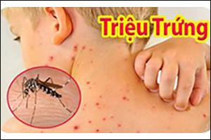 Cách theo dõi người bệnh sốt xuất huyết