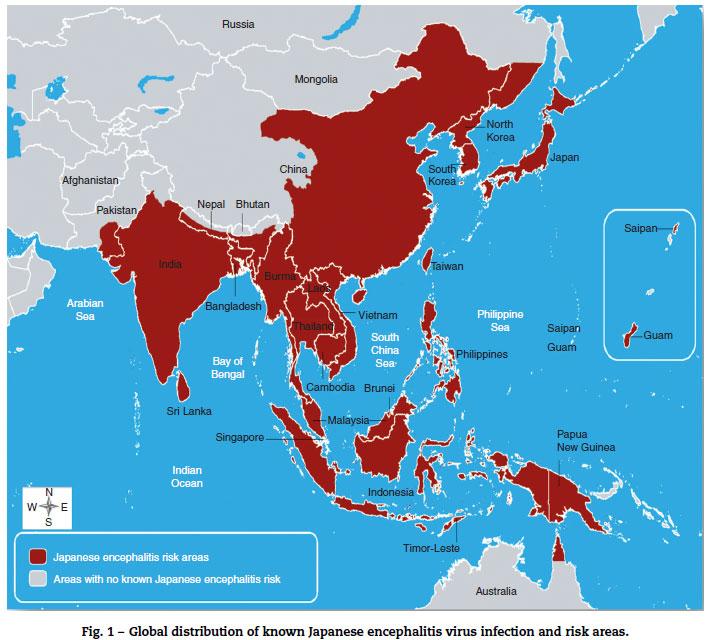 Các khu vực chịu ảnh hưởng của virus viêm não Nhật Bản trên thế giới