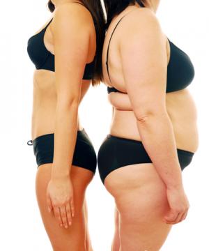Lá sen phòng chống béo phì