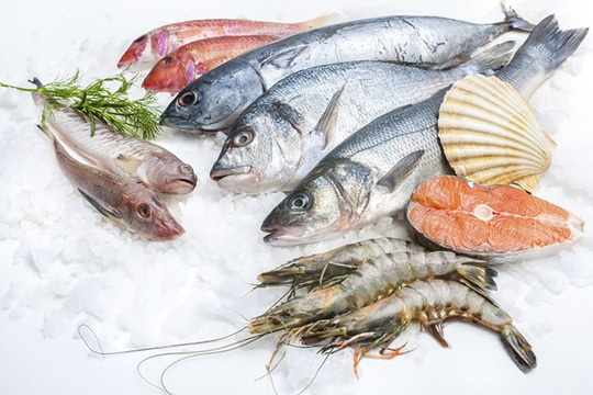 Trong hải sản chứa nhiều canxi rất tốt cho sức khỏe của người bị loãng xương