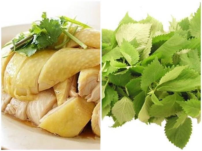 Thịt gà và rau kinh giới kết hợp cùng nhau sẽ gây khó tiêu