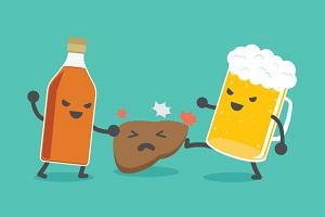 Mối liên hệ giữa rượu và gan nhiễm mỡ