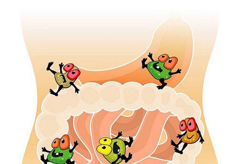 Duy trì số lượng lợi khuẩn ở đường ruột sẽ giúp tăng cường sức đề kháng cho bé