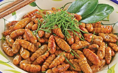 Món ăn ngon từ côn trùng: Nhộng rang lá chanh (Ảnh: Internet)