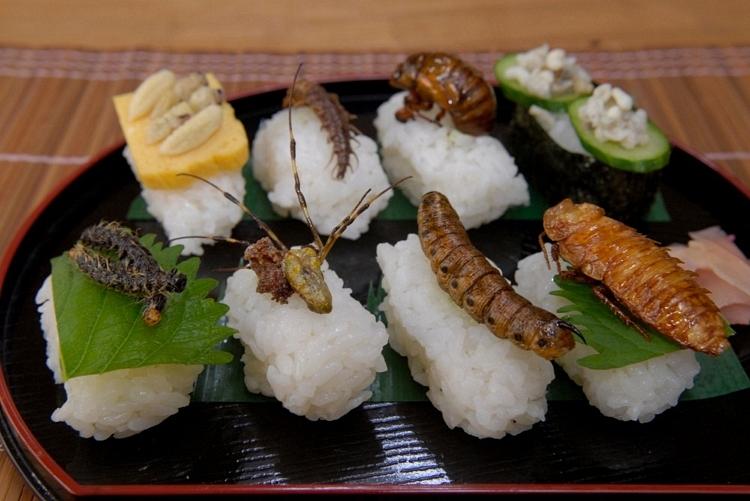 Món ăn ngon từ côn trùng (Ảnh: Internet)