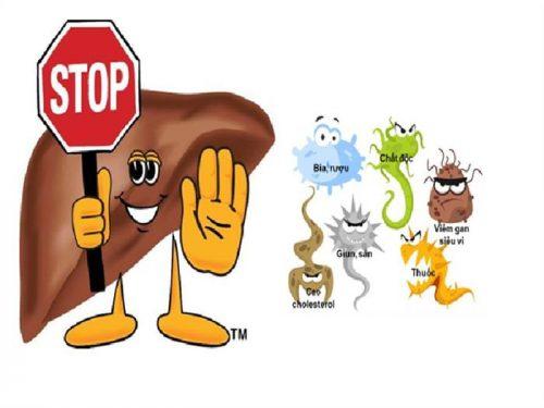 Làm gì để bảo vệ gan?