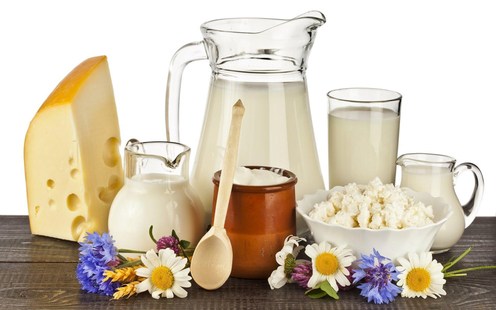 sữa bò và các chế phẩm từ sữa bò