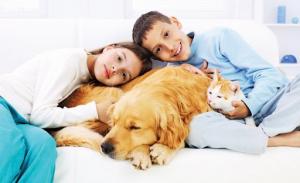 Nên thay đổi thói quen ôm ấp vật nuôi để bảo vệ bản thân trước dịch bệnh COVID - 19