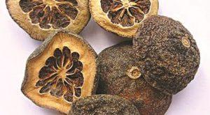 Chỉ thực là quả khô, chưa trưởng thành của rất nhiều loại Cam đắng