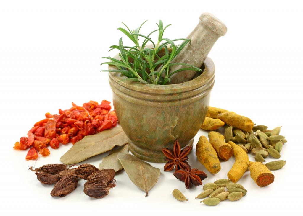 Có nhiều cây thuốc nam, thảo dược Đông Y giúp bào mòn sỏi túi mật
