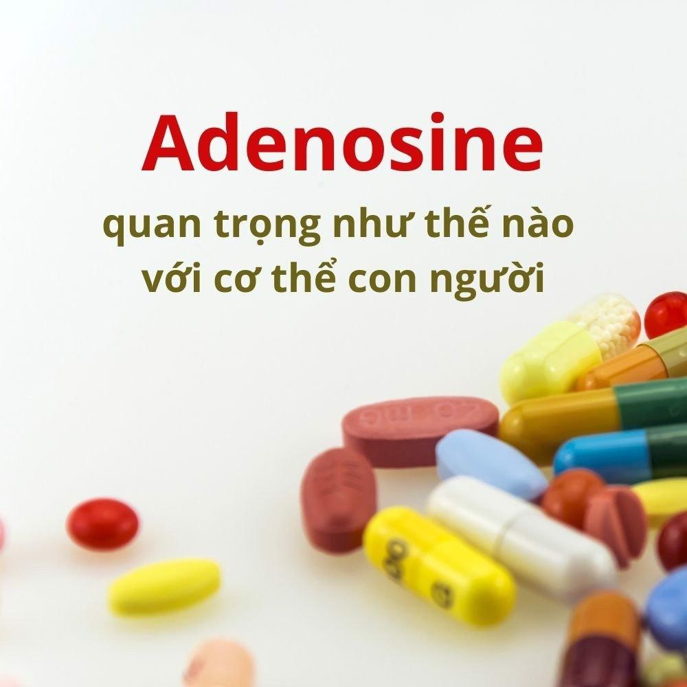 Chất adenosine