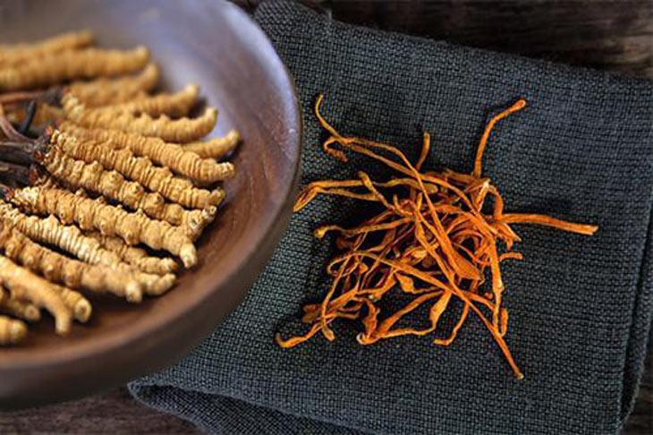 Đông trùng hạ thảo có thể sử dụng kết hợp với nhiều thảo dược khác