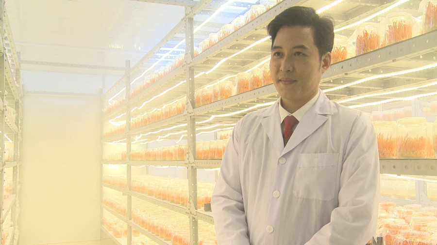 Giám đốc Sở khoa học và công nghệ tỉnh Hà Giang Phan Đăng Đông cho biết dự án thành công khi xây dựng vùng nguyên liệu sạch cung cấp cho hoạt động nuôi trồng đông trùng hạ thảo