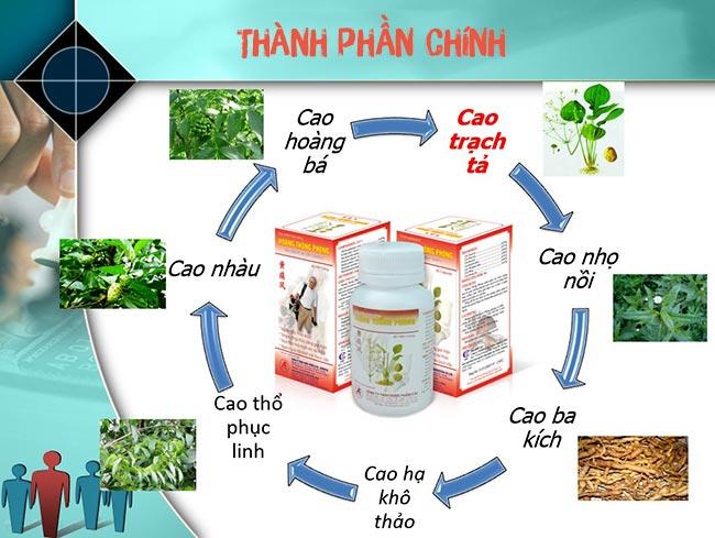 Hoàng Thống Phong gồm nhiều thảo dược quý giúp kiểm soát bệnh gout, phòng ngừa biến chứng
